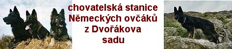 """Chovatelská stanice NO """"z Dvořákova sadu"""""""