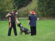 Výcviková neděle, 18.září 2011