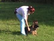 Ukázky výcviku, 24.září 2011, video