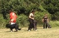 Výcvik, 5.června 2011