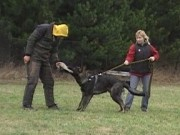 První výcviková neděle v roce 2012, 8.ledna 2012