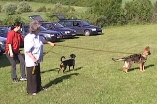 Víkendový výcvik, 18. až 20.května 2012